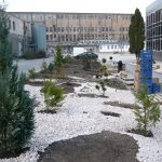 Jurnal de gradinar -Kalon Garden- Amenajari gradini 3