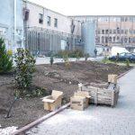 Jurnal de gradinar -Kalon Garden- Amenajari gradini 4