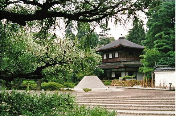 amenajari gradini japoneze aride 1