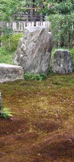 amenajari gradini japoneze aride 5