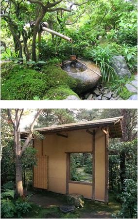 Amenajari gradini japoneze - gradina ceaiului 2b
