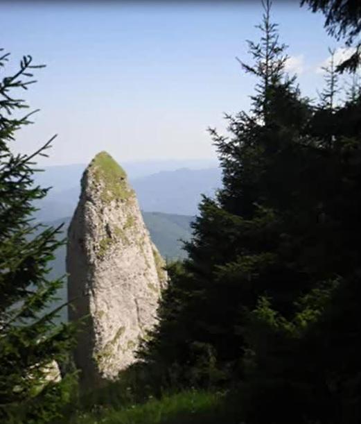 amenajari gradini -muntii Ceahlau 14